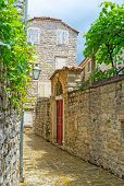 pic of yugoslavia  - The scenic medieval street with the old stone fence and the wooden gate separating the small garden with the shady grape vines Budva Montenegro - JPG