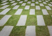 Stone Pave Decorated Background