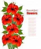 Background with a bunch of red flowers. Vector.