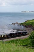 Great Westrn Steam on the Devon Coast