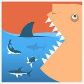 Keep Sharks Safe.