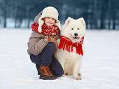 Happy Teenager Boy Walking With White Samoyed Dog