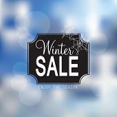 Vector Winter Sale Poster