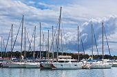 Yachts In Marina