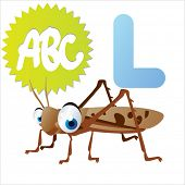 L is for Locust