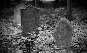 foto of cherubim  - An old gravestone in the cemetery black and white