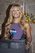 NEW YORK - OCT 16, 2014: Laverne Cox, actress in 'Orange Is The New Black' at the ceremony to light the Empire State Building purple honoring GLADDs Spirit Day and National Bullying Prevention Month.