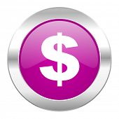 dollar violet circle chrome web icon isolated