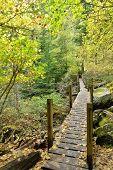 Lindeman Lake Trail