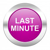 last minute violet circle chrome web icon isolated