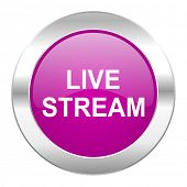 live stream violet circle chrome web icon isolated