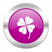 four-leaf clover violet circle chrome web icon isolated