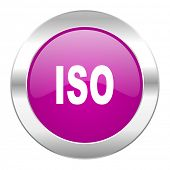 iso violet circle chrome web icon isolated