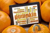 pumpkin word cloud on a digital tablet surrounded by pumpkins - fall holidays concept