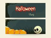 Header or banner for Halloween party celebration with skull and pumpkin.
