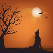 Silhouette of fox and flying bat for Halloween party celebration on night view background.