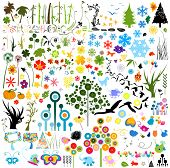 collection of various nature elements