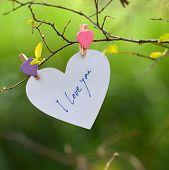 Heart Shaped I Love You Card