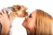Beautiful woman's Yorkshire terrier dog gives kisses