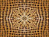Abstract Kaleidoscope Fur Pattern