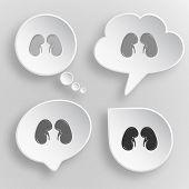 Kidneys. White flat raster buttons on gray background.
