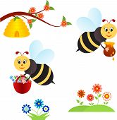 foto of insect  - isolated bee insect vectors  - JPG