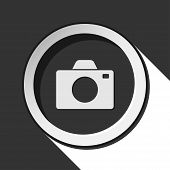 Vector Grey Button With Camera