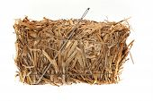 stock photo of haystack  - Needle in a haystack in front of white background - JPG