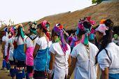 Karen Tribal Girls From Padaung Long Neck Hill Tribe Village