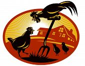 picture of oval  - vector illustration of a rooster crowing on top of spade shovel with hen chicken and chicks and cottage farm house barn in background set inside oval with sunburst done in retro style - JPG