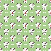 dog and bone pattern