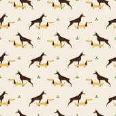 pic of rabies  - Seamless pattern with dachshund anddoberman   dog vector background - JPG