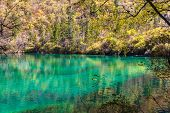 Beautiful Pond In Jiuzhaigou National Park