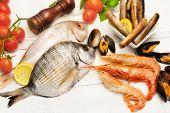 Raw Seafood  Selection