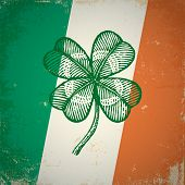 Clover on Irish flag