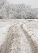 Winter And Road