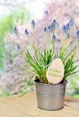 Flower Pot With Bluebells