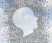 picture of human face  - Human freedom and emigration concept as a group of flying geese as an organized flock of birds in the shape of a head or face profile as a symol for liberty and independence or vacation travel - JPG