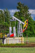 image of nonrenewable  - Oil Pump on a background of forest in Russia - JPG
