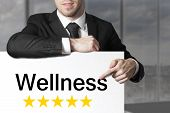 Businessman Pointing On Sign Wellness Five Stars
