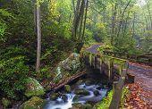 Roaring Fork Bridge