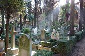 Non-catholic Cemetery In Rome