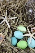 Beach Easter Egg Background