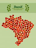stock photo of tomato plant  - Map of Brazil made out of red tomatoes - JPG