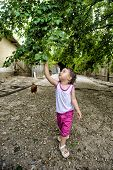 image of gathering  - Cute little baby girl gathers mulberies on a farm - JPG
