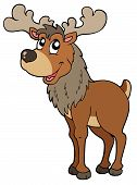 picture of cariboo  - Cartoon reindeer on white background  - JPG