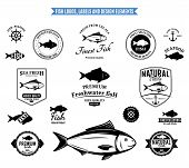 stock photo of freshwater fish  - Lots of vector fish design elements for your work - JPG