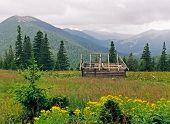 Mountainous Meadow 8