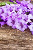 stock photo of gladiolus  - fresh blue gladiolus flowers on wooden table  background - JPG