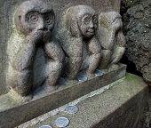 Monkey Statue Tokyo,Japan